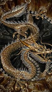 chinese dragon tattoo design 18 best dragons images on pinterest dragon drawings chinese