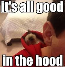 Funny Hood Memes - its all good in the hood meme guy