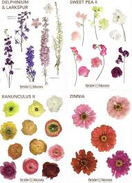 wedding flowers names bloom flower chart flower names flower