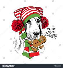 christmas card portrait basset hound dog stock vector 471693056