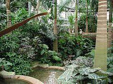 Botanic Gardens Dc United States Botanic Garden