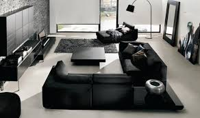 Amazing Modern  Black And White Chairs Living Room Helkkcom - Black and white chairs living room