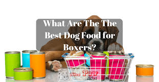 boxer dog upset stomach best dog food for boxers 2017 u2013 buyer u0027s guide