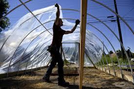 gardener builds greenhouse in provo community garden within one