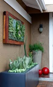 best succulent wall gardens ideas on pinterest diy and succulents