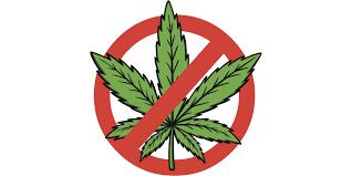 Colorado Flag Marijuana Anti Cannabis Group Presents False Mmj Claims According To