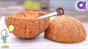 how to reuse waste coconut shell best out of waste ideas