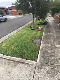 best gardening and lawn mowing services luxury home design