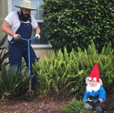 gnome costume for toddlers dad dresses up his baby in hilarious costumes including a