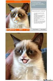 Grumpy Cat Meme Happy - grumpy cat is happy for once by tomturc35 meme center