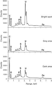 geochemistry of uraniferous bitumen in the southwest athabasca