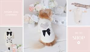 teacup dog clothes teacups puppies u0026 boutique
