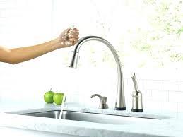 Danze Opulence Kitchen Faucet Danze Faucet Reviews Single Handle Faucet Series Single Handle