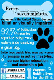 Blind Support Services 173 Best Guide Dog Images On Pinterest Guide Dog Puppys And Blind