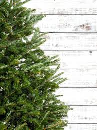 artificial trees peppermint forest 8 foot tree uk