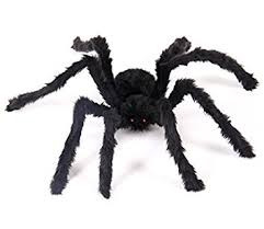 Halloween Outdoor Decorations Amazon by Amazon Com Giant 5 Ft Spider Halloween Decorations U2013 Large Hairy
