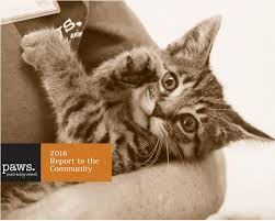 2016 annual report by paws issuu