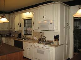 How To Paint Old Kitchen Cabinets Repaint Kitchen Cabinets Should I Paint Design Inspiration