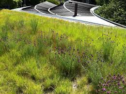 greenroofs com projects brooklyn botanic garden visitor center