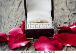 engage diamond ring rosa diamonds stock images royalty free images vectors