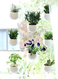 window herb garden kitchen window herb garden kitchen window