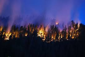 Wild Fire Update Montana by This Is How Much Of The World Is Currently On Fire Popular Science