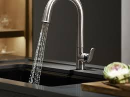 sink u0026 faucet stunning kitchen faucet single hole kohler