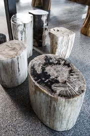 Petrified Wood Bench Petrified Wood