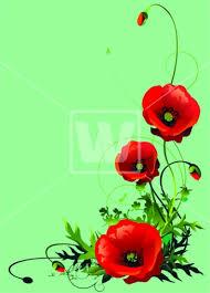 poppy vector welcomia imagery stock