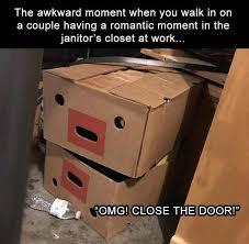 Cardboard Box Meme - beautiful these 19 exles cat logic are something every cat