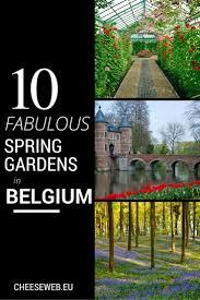 belgium u0027s top ten spring sights for garden and nature lovers
