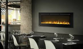Napoleon Electric Fireplace Napoleon 50 Linear Built In Wall Mounted Electric