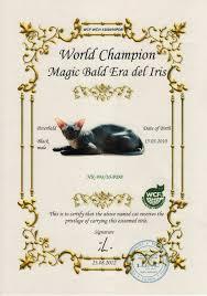 bacardi 151 logo mūsų pasaulio čempionai alphacatum