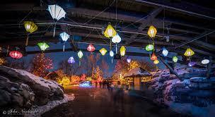 zoo lights at the denver zoo photos
