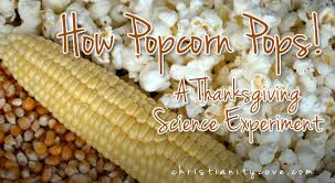 popcorn pops a thanksgiving science experiment