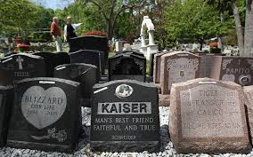 Dog Burial Backyard Condolences U2013 And A Fat Profit Margin U2013 On The Loss Of Your Pet