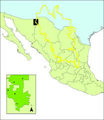 map of mexico with states mexico states map baylor cus map india world map