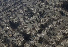 California Wildfires Pets by Death Toll Rises To 23 Hundreds Missing As California Wildfires