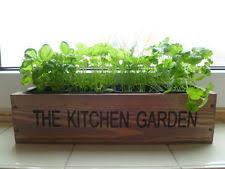 herb garden planter ebay