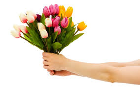 make new year special send flowers