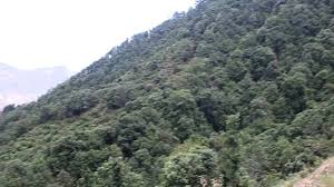 ramgarh forests youtube