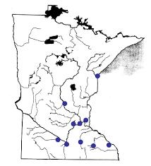 Minnesota rivers images Mn shoreland management rivers primer gif