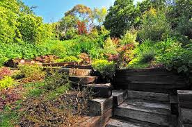small space gardening ideas india the garden inspirations