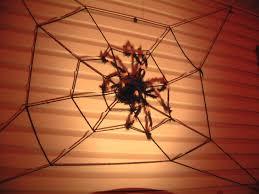 halloween spider web lights halloween pictures