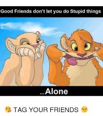 Stupid Friends Meme - good friends don t let you do stupid things alone tag your