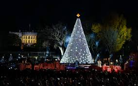 2017 national christmas tree lighting 10 fun facts about the national christmas tree