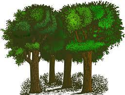 of trees clip at clker vector clip