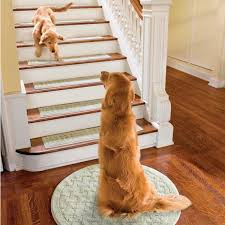 Pet Resistant Rugs Best 25 Farmhouse Stair Tread Rugs Ideas On Pinterest Dash And