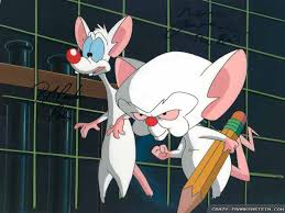 pinky and the brain pinky and the brain background nice wallpaper photo shared by