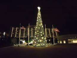 a disney in orlando o disney christmas trees u0026 more